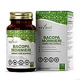 Ezyleaf Bacopa Monnieri Kapseln | 120 Vegane Kapseln | Brain Booster | Zur Leistungssteigerung Gehirn & Gedächtnis | Gentechnikfrei, Saubere Füllstoffe | Gluten- & Milchfrei
