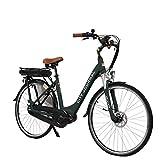 AsVIVA E-Bike Damen Hollandrad 28', Tiefeinsteiger (13Ah Akku), 7 Gang Shimano Schaltung, Mittelmotor, Scheibenbremsen, grau