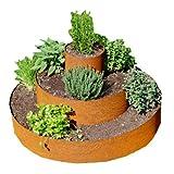 prima terra Pflanzenpyramide Edelrost, Pflanzringe, Kräuterpyramide, Beet, Baumringe Ø=80cm Gesamthöhe=45cm