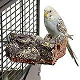 HappyBird ® | Kork-Sitzbrett XS für Wellensittiche & Papageien ca. 10-8 cm Natur Kork