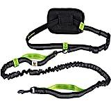 Joggingleine für kleine Hunde bis 15 kg   Elastische Reflektierende Hundeleine von 110 bis 160 cm dehnbar   Leine zum Joggen Laufen Radfahren Wandern