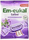Em-Eukal Salbei-Bonbons zuckerfrei, 20er Pack (20 x 75 g Beutel)