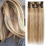 TESS Echthaar Extensions Clip in Ombre Remy Haar Extensions guenstig Haarverlängerung 18 Clips 8 Tressen Lang Glatt, 16'(40cm)-65g #12/613 Hellbraun/Blond