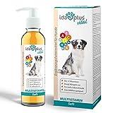 Ida Plus - Multivitamin Saft für Hunde - 200ml - 17 wichtige Vitamine für den Hund - Ideal zum Barfen - Vitamin B Komplex - Vitamin A, C, D, D3, E, K, Biotin - für eine optimale Vitamin-Versorgung