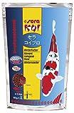 sera KOI Professional Winterfutter 500 g unter 12 °C Spezial Futter für Koi & andere wertvolle Teichfische mit Präbiotika für verbesserte Futterverwertung, geringere Wasserbelastung & weniger Algen