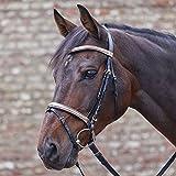 Waldhausen Star Trensenzaum Roségold, schwarz, Pony