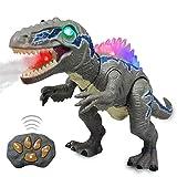 WISHTIME Fernbedienung Dinosaurier ElectricToy Kinder RC Tierspielzeug LED Leuchten Sprühnebel Dinosaurier Gehen und Brüllen Realistische Velociraptor Roboter Spielzeug Für Kleinkinder Jungen Mädchen