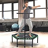 ISE Fitness Trampolin mit Handyhalter,Trampolin für Jumping Fitness Ø 122 cm höhenverstellbarer Haltegriff(113.5-134.5cm),leise Gummiseilfederung,Nutzergewicht bis 120kg,TÜV-Geprüft (Grün)