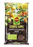 Compo SANA Zitruspflanzenerde mit 12 Wochen Dünger für alle Zitruspflanzen und mediterranen Pflanzen, Kultursubstrat, 10 Liter