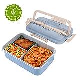 HALOVIE Lunchbox -Praktische Bento Box für den Transport von Mahlzeiten - Design Brotdose für die Schule und Arbeit für Kinder & Erwachsene - Mit 3 Fächern und Besteck,1000ml