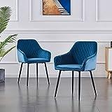 JYMTOM Esszimmerstühle 1 Stück 2er Set Küchenstuhl Polsterstuhl Wohnzimmerstuhl Sessel,Blau 2pc