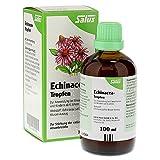 Salus Echinacea-Tropfen, 100 ml Lösung