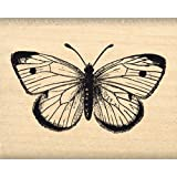 Florilèges Design FC114005Stempel, Motiv: Schmetterling, Scrapbooking, 4°x°5°x°2,5°cm, Beige