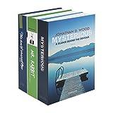 HMF 4312202 Buchkassette XL, Geldkassette Buchattrappe Geldversteck 22,0 x 13,0 x 15,0 cm