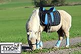 Tysons Breeches Ponysattel Sattel 10 o 12 Zoll BLAU -Schwarz incl. Zubehör a.f. e. Holzpferd geeignet Sattel Set (12 Zoll)