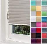 Home-Vision Premium Plissee Faltrollo ohne Bohren mit Klemmträger / -fix (Grau, B60cm x H150cm) Blickdicht Sonnenschutz Jalousie für Fenster & Tür