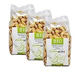Cashewkerne bio - Ganze Cashew Nüsse, naturbelassen I ungesalzen I 600g (3x200g) BIO-AT-301