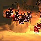 Meter Licht Batterie Lichterkette Warmweißes Eisenhirsch 2M Lichterketten 10 Led Outdoor Indoor Weihnachtsbaum Weihnachten Eisregen, Warm-Weiss/Kalt-Weiss, Innen AußEn Adapter