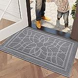 DEXI Schmutzfangmatte 80 x 120 cm,wasserabsorbierende Fußmatte für Innen und Außen,rutschfest und waschbar Haustürmatte Türmatte Teppiche Eingangsteppich,Hellgrau