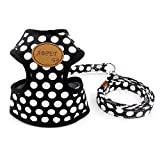 smalllee_lucky_store Hundegeschirr mit Leine und weicher Nylon-Netzweste für kleine Haustiere, Katzen-/Hundegeschirr