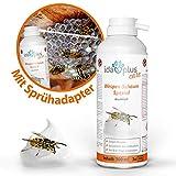 Ida Plus – Wespenschaum Spezial 300ml – Antiwespen Schaum - gegen Wespen - und Hornissennester – zuverlässiger und schneller Wespenschutz - verschließt das Einflugloch – Sofortwirkung - Wespenabwehr