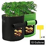 IZSUZEE 2 Stück Kartoffelsack, 10 Gallonen Pflanzsack Pflanzbeutel Pflanztopf mit Sichtfenster und Griffen, Atmungsaktive Pflanztaschen für Kartoffeln, Blumen, Pflanzen, Gemüse, MEHRWEG