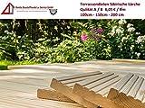 7€/lfm Terrassendiele sibirische Lärche Massivholz Gartenholz Terrassenholz Naturholzdielen Massivdiele (fein, 100)