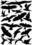 EAST-WEST Trading GmbH Vogelaufkleber für Fenster, Wintergärten, Glashäuser zum Vogelschutz, Warnvogel Vogel-Silhouetten, Schutz vor Vogelschlag, Fensterschutz von ewtshop Art.Nr. EWT-16-A-0072-1