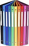 10er Pack Exacompta 51299E Ringbuch (PP 500µ, 4 Ringe, Rücken 20mm, blickdicht, DIN A4) 10 Farben (10) (10er Pack, sortiert)