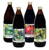 Kopp Vital Kennenlern- Biosaftbox | 4 Flaschen à 1 Liter | Aloe Vera | Granatapfel | Aronia | Noni-Saft | 4 Bio Säfte