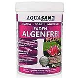 AQUASAN Gartenteich ALGOLESS Faden-Algenfrei Plus (Beseitigt schnell und stoppt Fadenalgen im Teich. Der Fadenalgen-Entferner, Fadenalgen-Vernichter, Fadenalgen-Mittel), Inhalt:1 kg