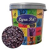 Lyra Pet® 10 kg Futterrosinen 10000 g Wildvögel Sultaninen Trockenfrucht in 30 L Tonne