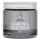 Schlamm Maske aus dem Toten Meer 250g - Dead Sea Mud Mask mit Natürliche Zutaten - Peeling, Tiefenreinigung, Feuchtigkeitsspendend - Naturkosmetik - Reich an Mineralien - Anti-Aging Pflege