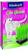 Vitakraft Cat Grass, Katzengras-Set, 1 Stück