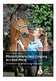 Pferdeführerschein Umgang mit dem Pferd: Standardwissen für jeden Pferdefreund - das offizielle Lehrbuch