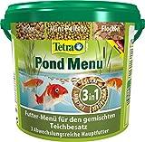 Tetra Pond Menü – Fischfutter Menu mit drei verschiedenen Futtersorten für alle Teichfische (Flockenfutter, Futter Sticks, Mini Pellets), 4,8 Liter