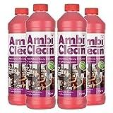 AmbiClean® Flüssig-Entkalker für Kaffeevollautomat, Kaffee-Maschine, Wasserkocher etc.   100% Natürlicher Kalk-Reiniger - 4 x 750ml