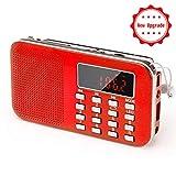 PRUNUS L-218AM Portables Mini Radio AM(MW)/UKW FM/Micro TF Card/USB/MP3, 1200mAh Akku. Geschäfte und Sendestationen [NUR automatisch].