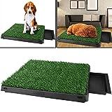 Befied Hundetoilette Welpentoilette mit Kunstrasen, Trainingsunterlage Indoor für Hunde Tier WC, 63x 50x 7cm(L x B x H)