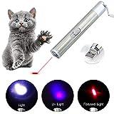 Angel's Pride LED Pointer für Katzen/Spielzeug Haustier Katze/interaktives Spielzeug/mit USB