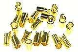 first-us Goldstecker 6mm 10 Paar (20 Stück) Gold Stecker Vergoldet Goldies Stecksystem Steckverbindung Steckverbinder RC Modellbau Standmodellbau Neu