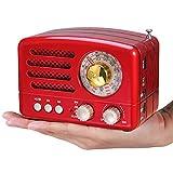 PRUNUS J-160 AM/FM/SW Kleines Vintage Radio mit Bluetooth, Tragbares Retro Radio mit 1800mAh wiederaufladbare Batterie, Unterstützt USB/TF-Karte/Aux Funktion (rot)