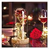 CawBing Die Schöne und das Biest Rose Geschenk Kit,Rose im Glas,Rosen Holzsockel LED-Licht für Hauptdekor Geburtstag, Hochzeit, Valentinstag, Muttertag, Jubiläum, Weihnachtstag
