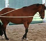 Pferdeseile_DE Langzügel aus Baumwolle Natur 2 x 4 Meter