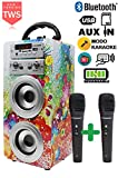 DYNASONIC - Tragbarer Bluetooth-Lautsprecher für Karaoke, 10W, 2 Mikrofone enthalten, Radio, USB und SD Reader, Rose Farbe