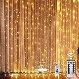 Pulchram LED USB Lichtervorhang 3m x 3m,300 LED USB Lichterkettenvorhang mit 8 Modi Wasserfest für Partydekoration deko schlafzimmer, Hochzeit Garten,Innenbeleuchtung, Warmweiß