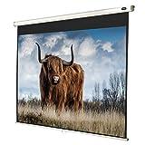 celexon manuell ausziehbare Heimkino- und Business-Beamer-Leinwand 4K und Full-HD Rollo-Leinwand Economy - 200 x 150 cm - 4:3 - Gain 1,0