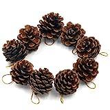 TRIXES 9 dekorative hängenden Tannenzapfen als Christbaumschmuck