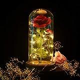 shirylzee Die Schöne und das Biest Rose, Ewige Rose im Glas Rose in Glaskuppel Künstlich Blumen Rosen mit LED-Licht, Haus Dekoration Geschenk zum Weihnachten Valentinstag Jubiläum Geburtstag Hochzeit