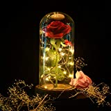 Shirylzee Die Schöne und das Biest Rose, Ewige Rose im Glas Rose in Glaskuppel Künstlich Blumen Rose mit LED-Licht, Haus Dekoration Geschenk zum Valentinstag Muttertag Jubiläum Geburtstag Hochzeit